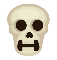 skull head avatar character vector image vector image