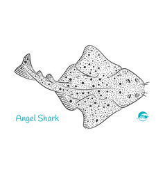 angel shark hand-drawn vector image