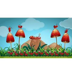 Ants in the mushroom garden vector image