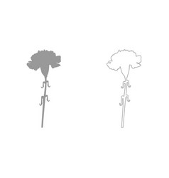 Carnation grey set icon vector
