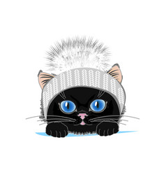 Cat in hat vector