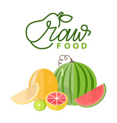 season food melon and watermelon citrus vector image