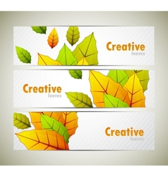 Set of banners with leaves vector image