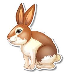 sticker design with cute rabbit cartoon character vector image