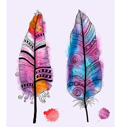 Watercolor feather and drops of paints vector