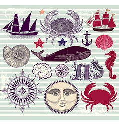 Marine Objects vector image vector image