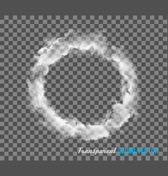smoke on transparent background vector image vector image