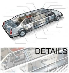 limousine info graphics vector image vector image