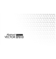 abstract hexagon honeycomb white background vector image