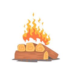 campfire logs burning cartoon vector image