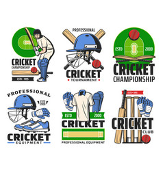 Cricket player with sport ball bat wicket icons vector