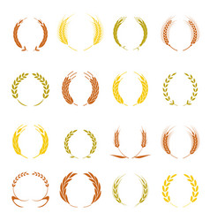Gold laurel wreath - a symbol of the winner wheat vector