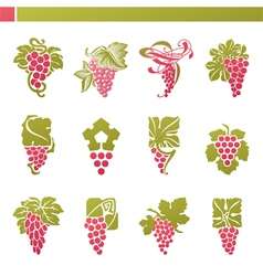 Logo template - grape with green leaf vector
