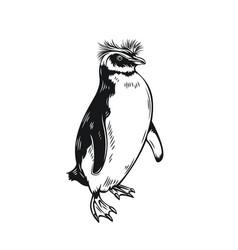 Penguin outline icon vector