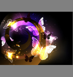 whirlwind with night butterflies vector image