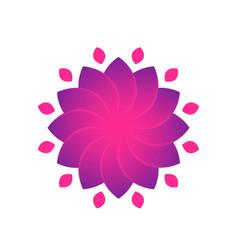 flower for logo design violet over white vector image