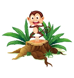 A boastful monkey above the trunk vector image