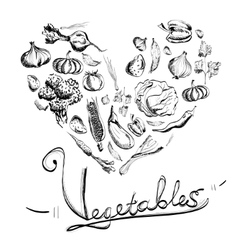 Hand drawn vegetables set with white background vector image