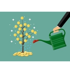 hand watering money coin tree with can vector image
