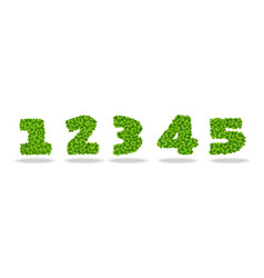 numeral from the leaves of the clover numeral 1-5 vector image