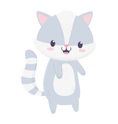Cute raccoon animal cartoon isolated icon vector