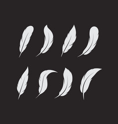 group white feather on black background easy vector image