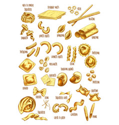 Italian pasta names sketch icons set vector