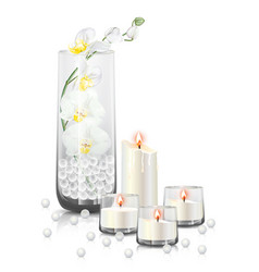 Orchid branch in clear vase and candles vector