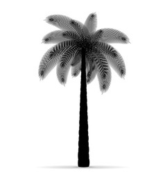 Palm tree silhouette 03 vector