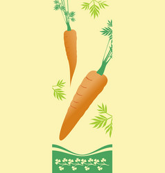 two ripe carrots vector image