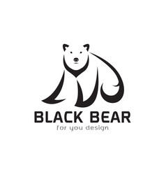 bear design on white background wild animals bear vector image