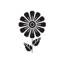 daisy black concept icon daisy flat vector image