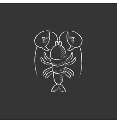 Lobster Drawn in chalk icon vector