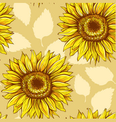 sunflowers field seamless pattern vector image