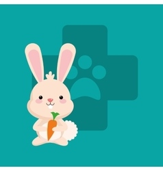 Veterinarian related icons image vector