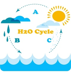water cycle infographics vector image vector image