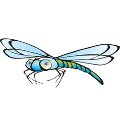 Abstract decorative dragonfly vector