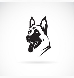 dog head german shepherd on white background pet vector image