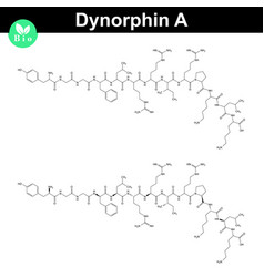 Dynorphin a chemical structure vector