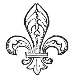 Fleur-de-lis are often seen as a stylized lily vector