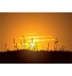 grassy sunrise vector image