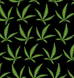Green Cannabis leafs on a black background vector