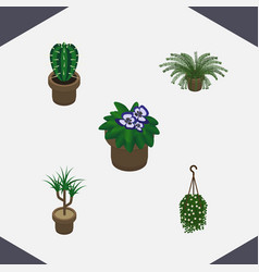 Isometric flower set of blossom plant flowerpot vector