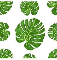 pattern of monstera vector image