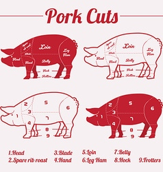 PORK meat cuts - red on white vector