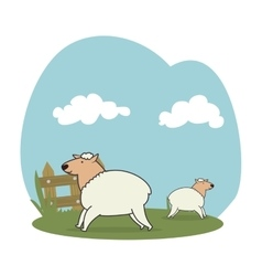 Sheeps in the field vector