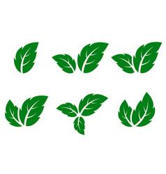 green leaf icons set vector image