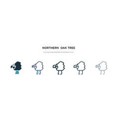 Northern oak tree icon in different style two vector