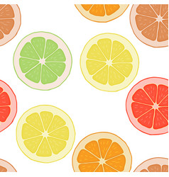 seamless pattern background with citrus vector image