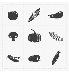 Vegetable Black Icon set on White vector image